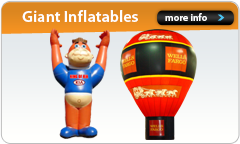 Link to Visibleinflatables.com